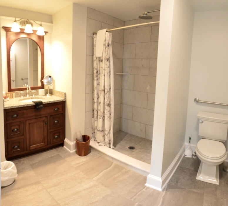 Photograph of the bathroom with toilet, walk-in shower, and vanity with mirror and 3 lights above it.